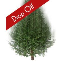 "Christmas Tree with red stripe and white text ""drop off"""